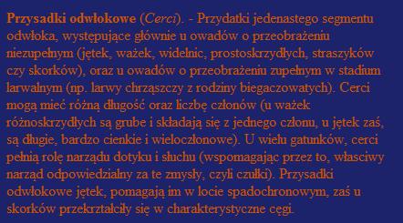 Cerci, z definicji.